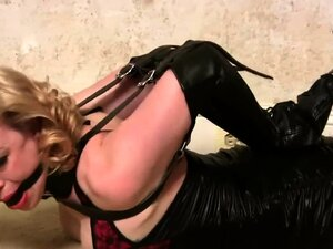 Collection of Spanking clips by Perfect Spanking