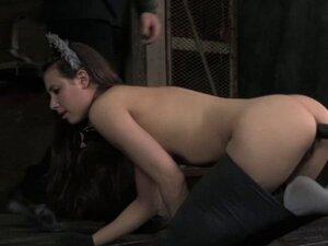 BDSM sub cat play Casey Calvert caned